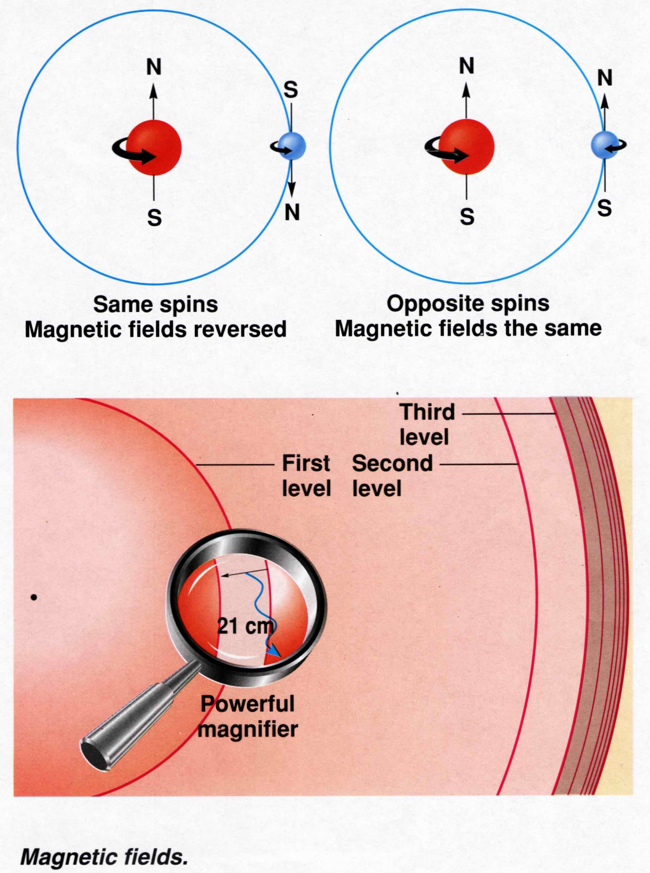 an overview of the physics of magnetic resonance microscopy